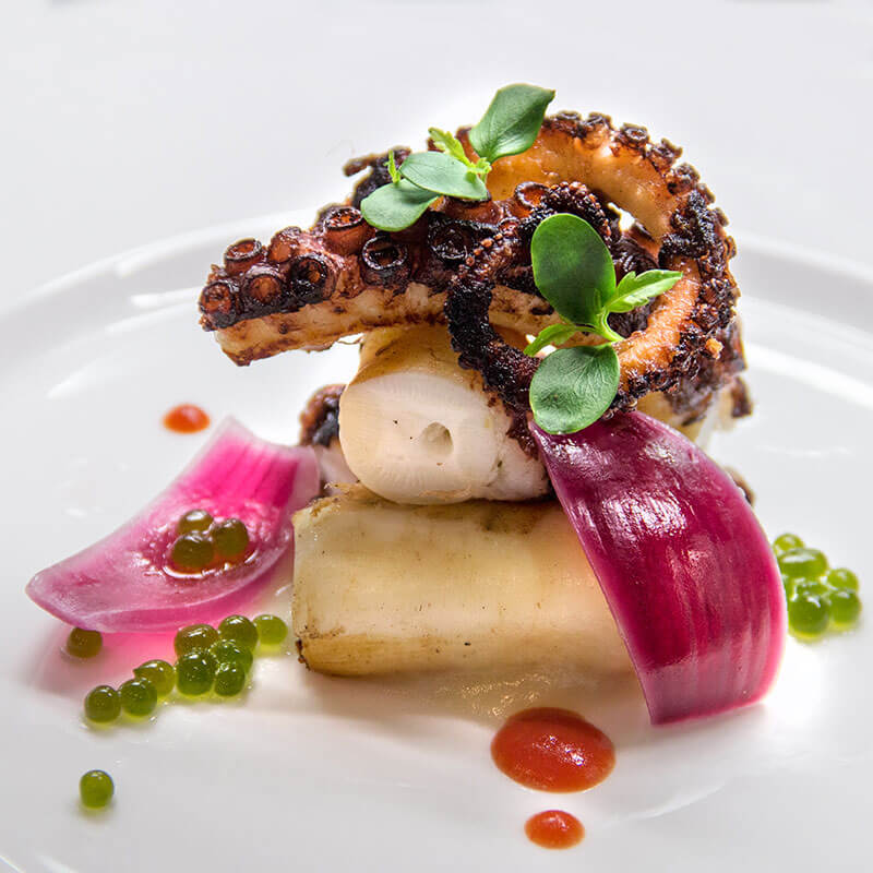 Roasted octopus, tomato gel, basil spheres and potato cream