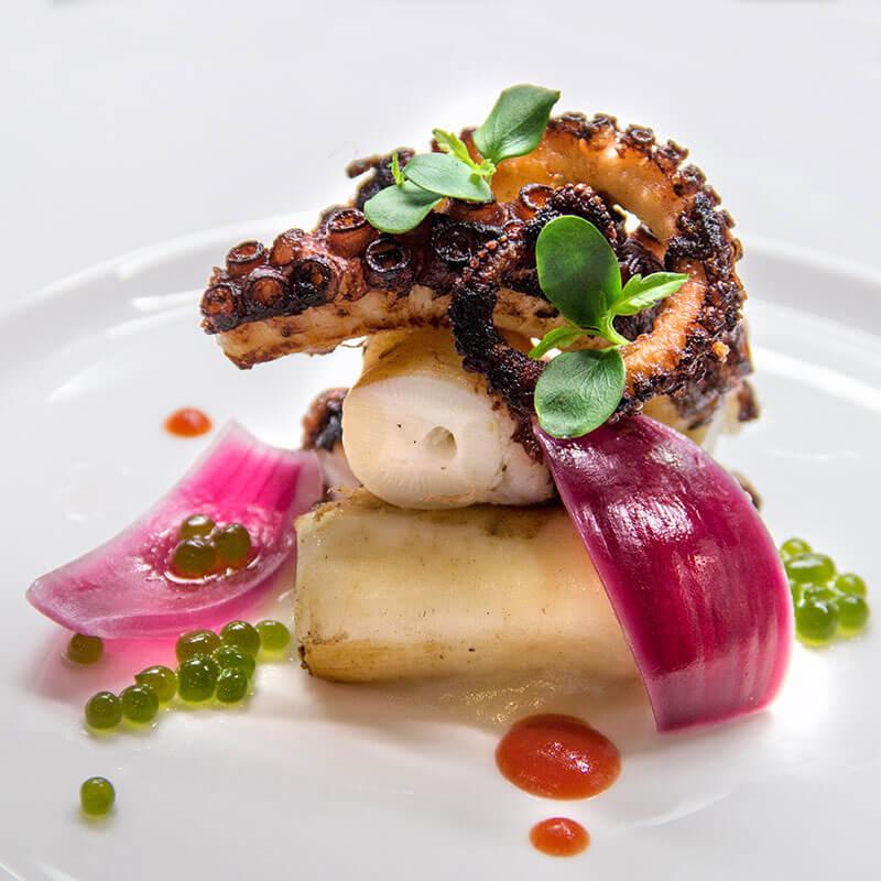 Roasted octopus, tomato gel, basil spheres and potato cream